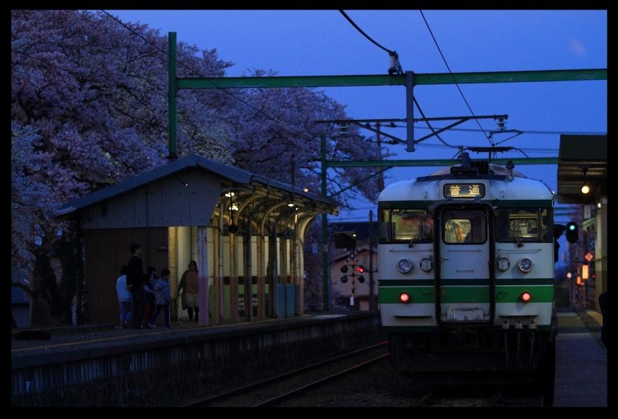 分水桜19413夜2