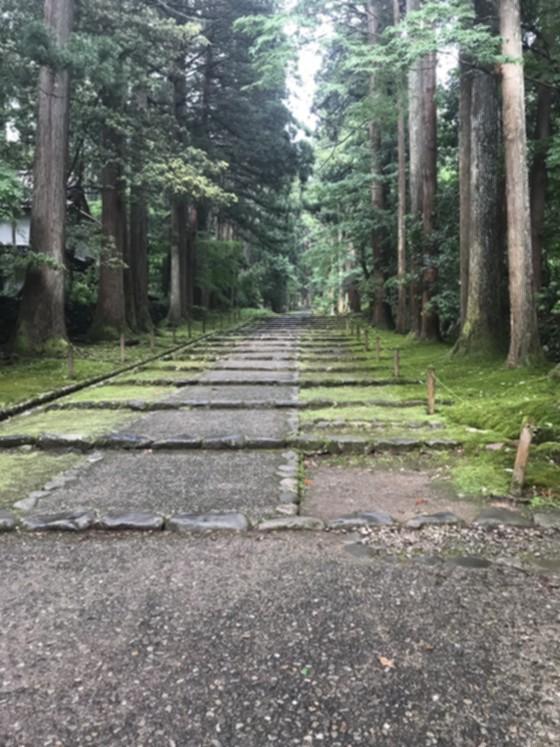 平泉寺白山神社_4