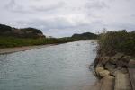 種子島51