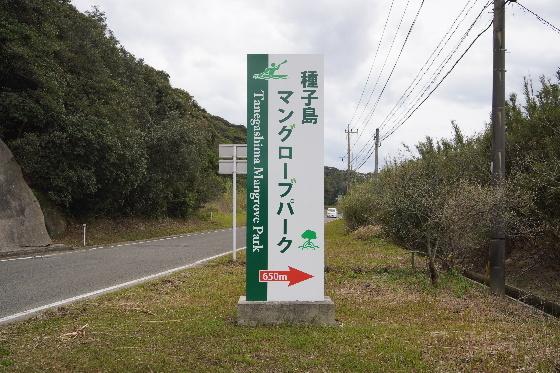 種子島54