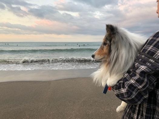 由比ヶ浜4