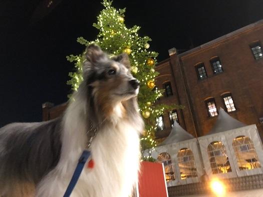 クリスマスマーケット8