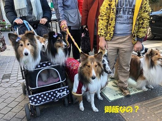 鎌倉巡り6
