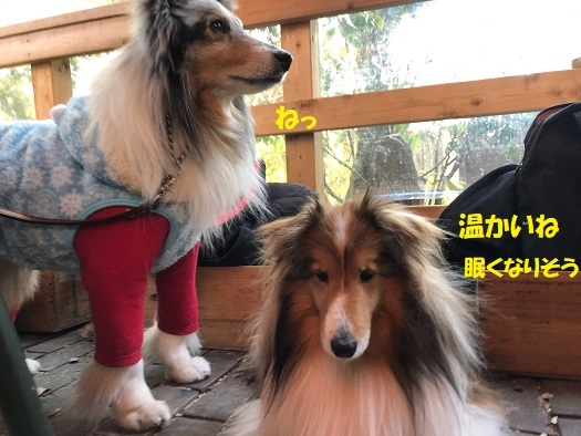 鎌倉巡り7