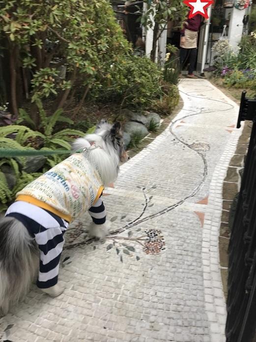 鎌倉ランチ8