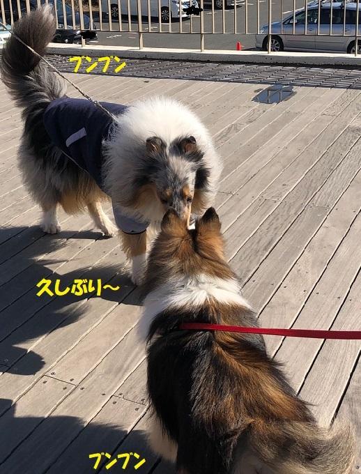 江ノ島散歩00