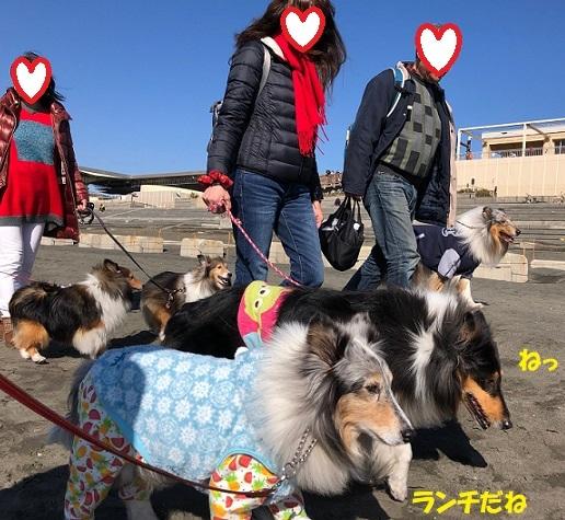 江ノ島散歩92