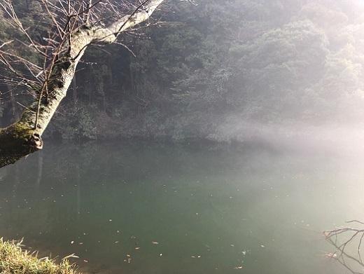 鎌倉湖11