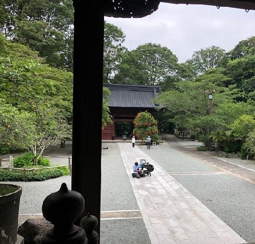 妙本寺散歩9