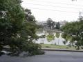 いつもの猿沢の池