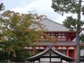 中金堂(北円堂より)
