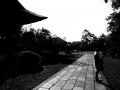 広隆寺...広い寺域