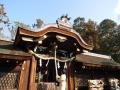 梅宮神社本殿