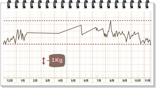 1年間体重変化表2018年