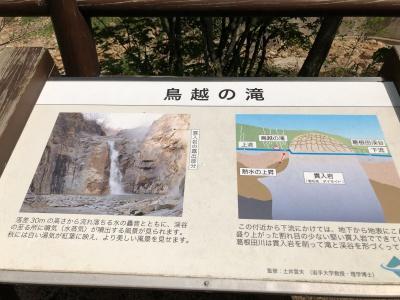 BCiwate4_tokio6.jpg