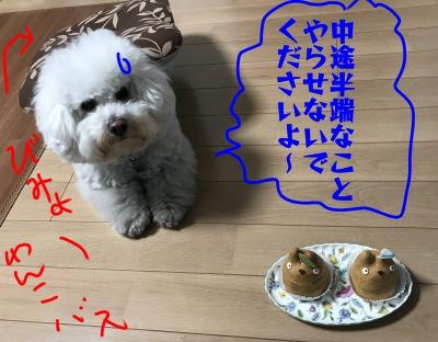 BCjiburi2.jpg