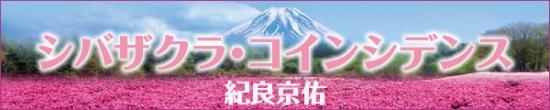 shibazakuraTitle.jpg