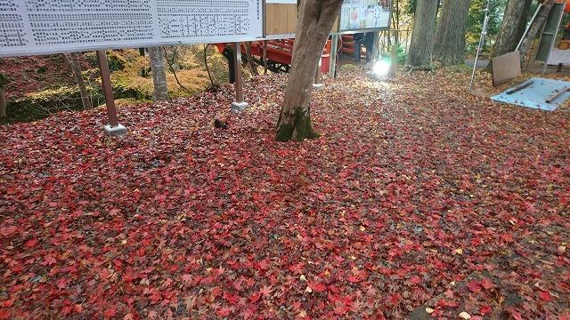 20181123-24 養父神社 竹田城 03