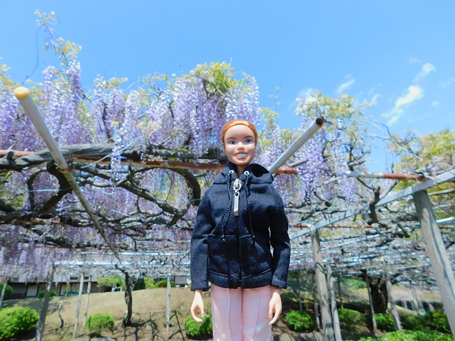 fuji-20130502-01.jpg