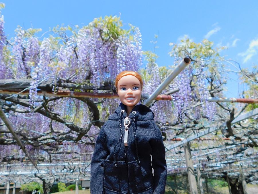 fuji-20130502-02.jpg