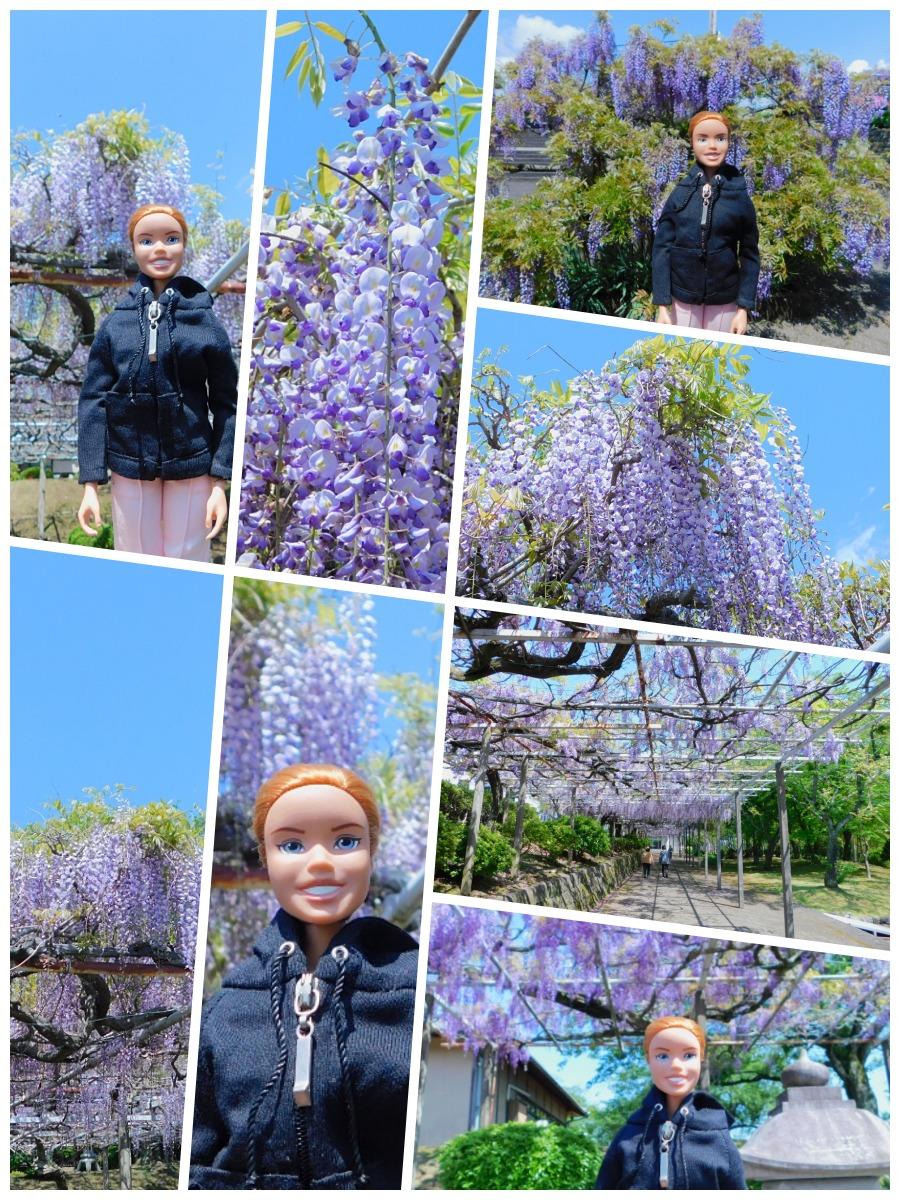 fuji-20130502-14.jpg