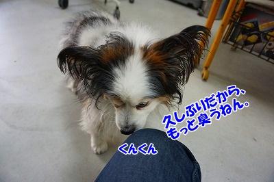 s-DSC05418.jpg