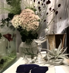 glass_plants1