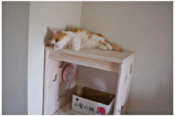 milraykirokureiwa_03.jpg