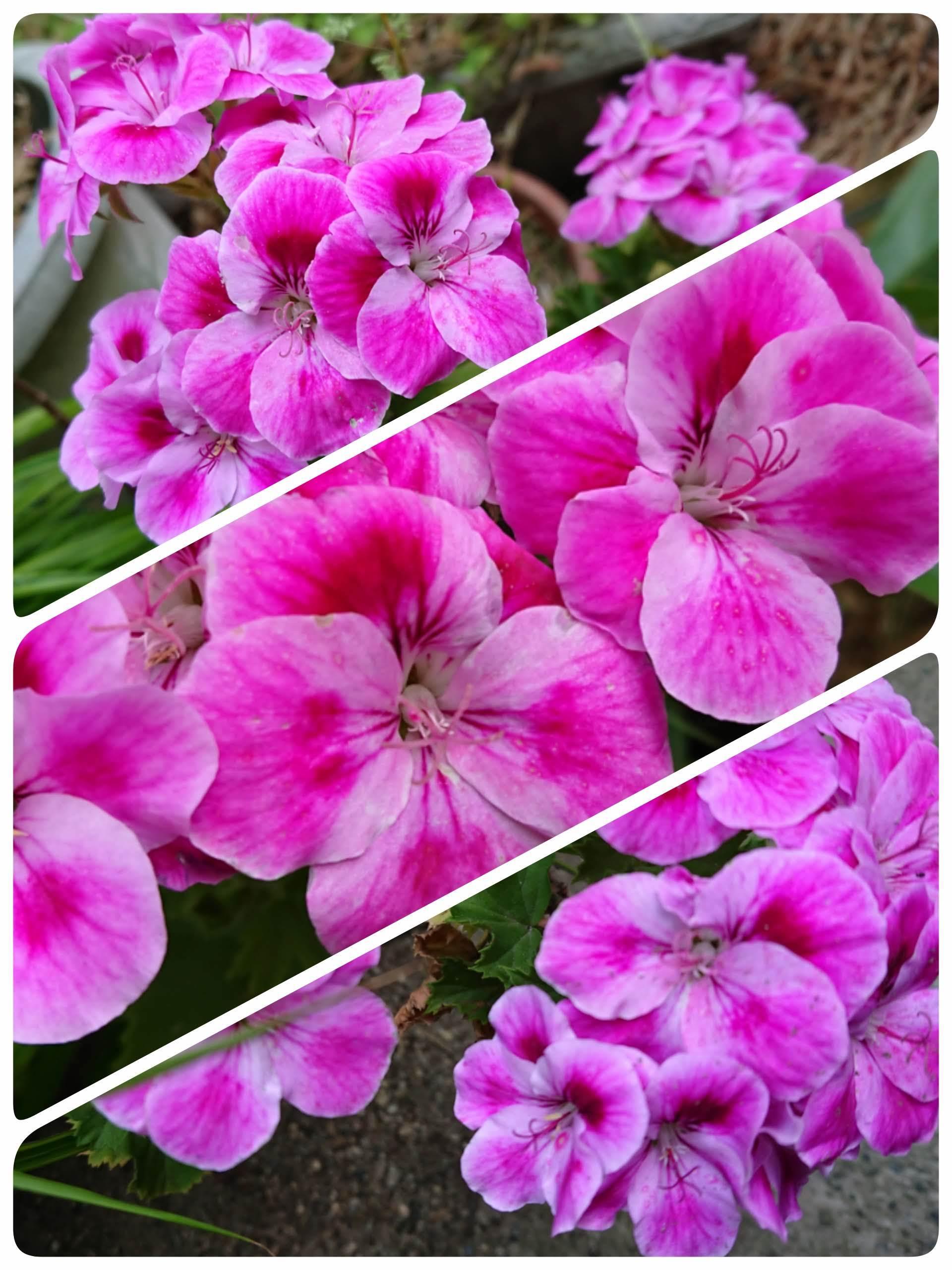 19-05-23-22-19-40-210_deco.jpg