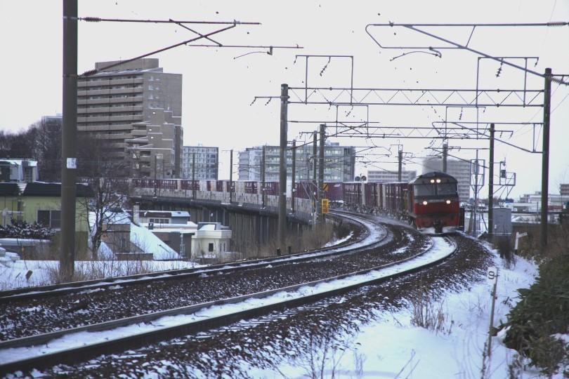 DF12IMG_7854-2.jpg