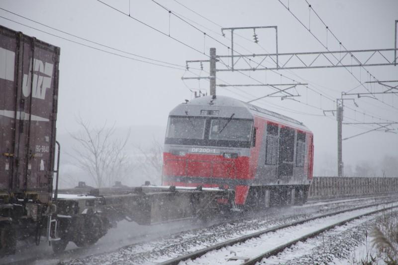 DF1IMG_7889-1.jpg