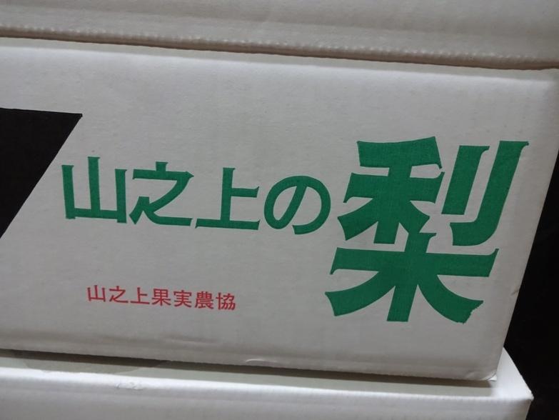 DSC08796 - コピー