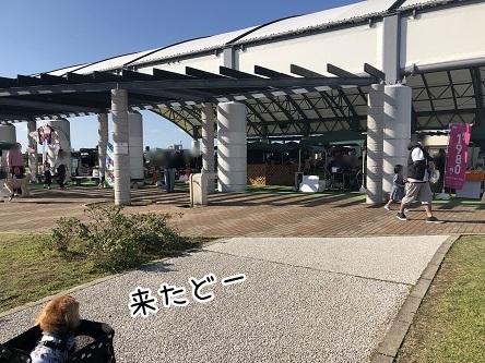 kinako10494.jpeg