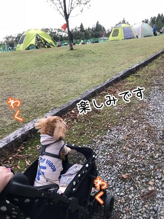 kinako10524.jpeg