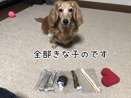 kinako10651.jpeg