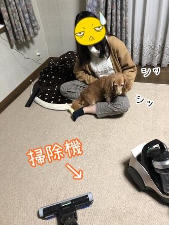 kinako10821.jpeg