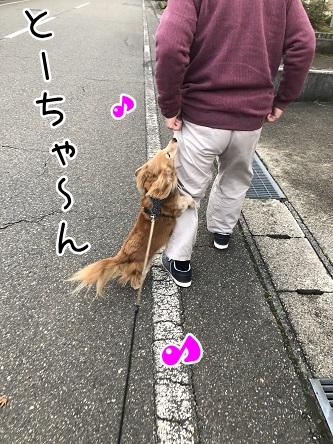 kinako10837.jpeg