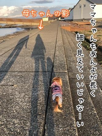 kinako10871.jpeg