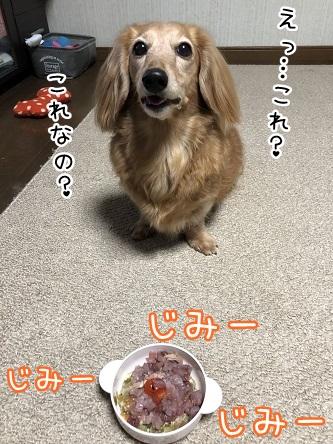 kinako10881.jpeg