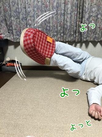 kinako10970.jpeg