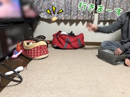 kinako11055.jpeg