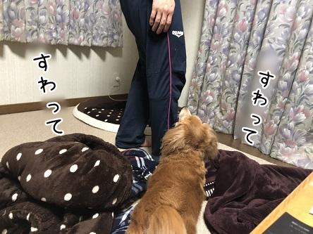 kinako11073.jpeg