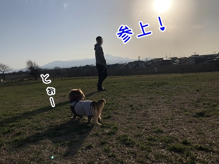 kinako11119.jpeg