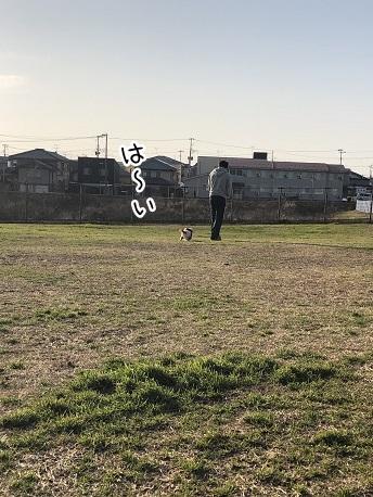 kinako11121.jpeg