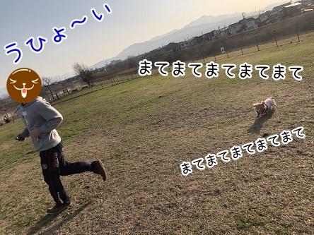 kinako11124.jpeg