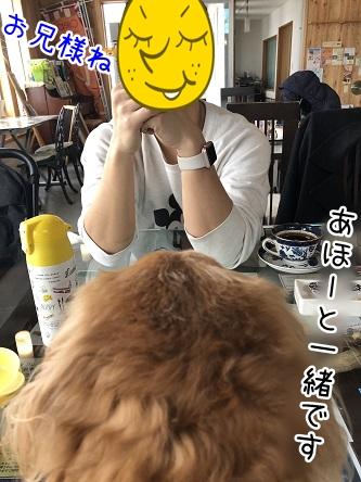 kinako11153.jpeg