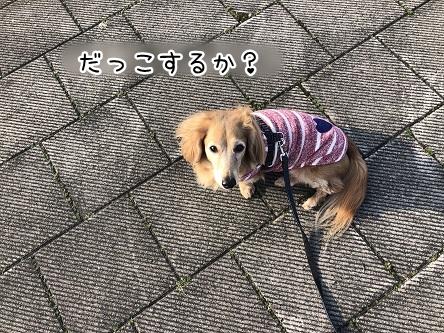 kinako11212.jpeg