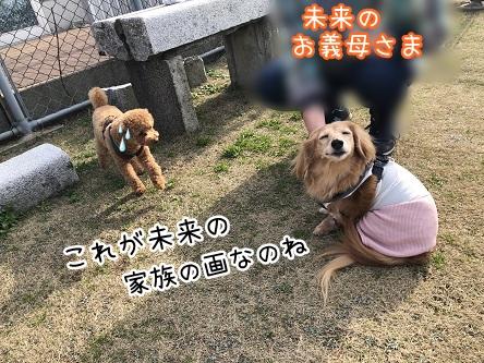 kinako11231.jpeg