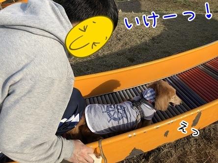 kinako11340.jpeg