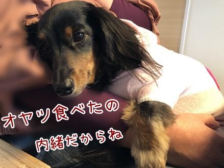kinako11450.jpeg